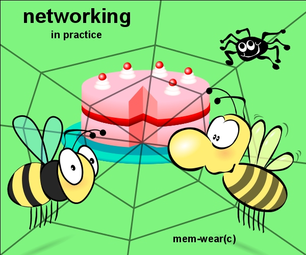 Bees Networking with Spider